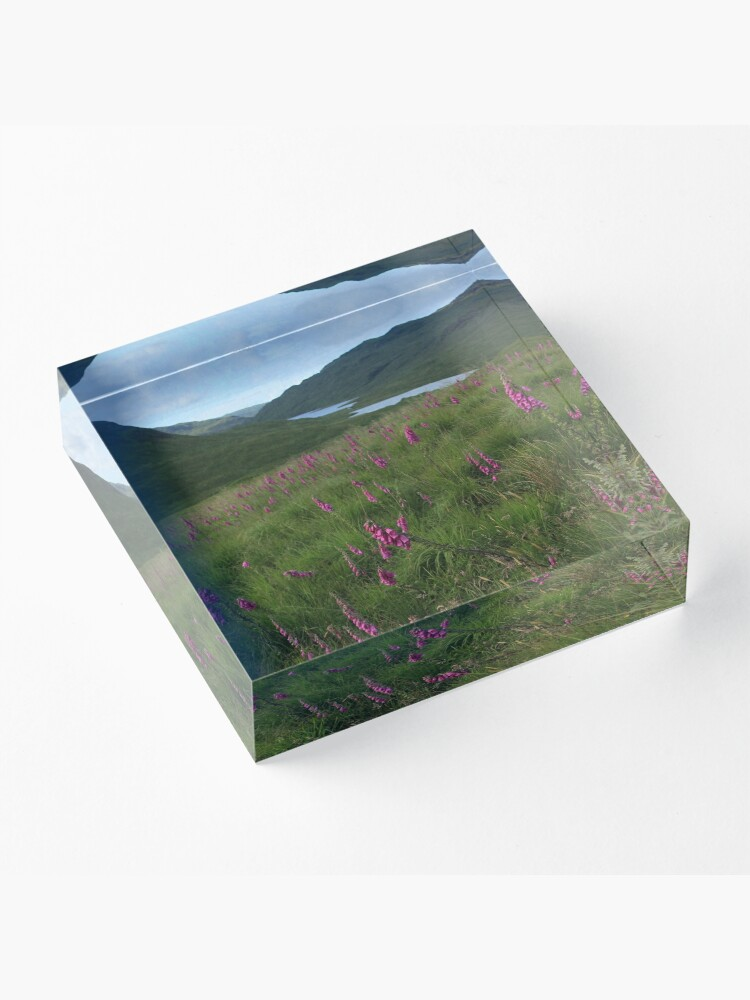 Alternate view of Field of foxgloves II Acrylic Block