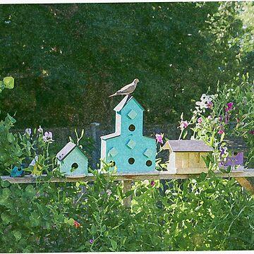 Dove on the Big Blue Birdhouse by empressofdirt