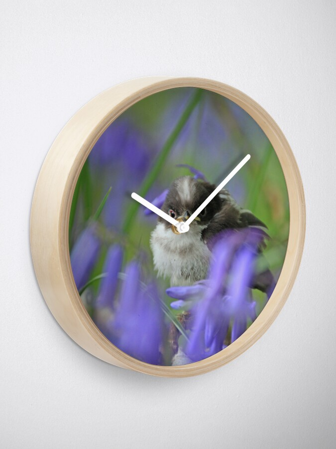 Alternate view of Bird in the blue Clock