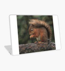 Squirrel shelter Laptop Skin