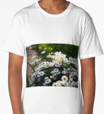 white daisies in the sun Long T-Shirt