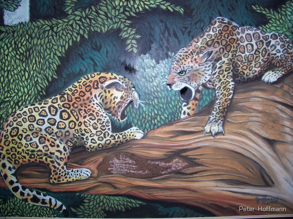 2jaguars by Peter  Hoffmann