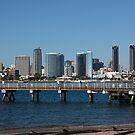San Diego Skyline by Jan  Wall