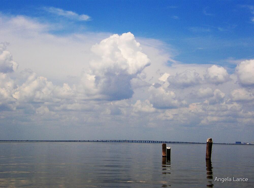 The Howard Franklin Bridge...Tampa Bay...  by Angela Lance