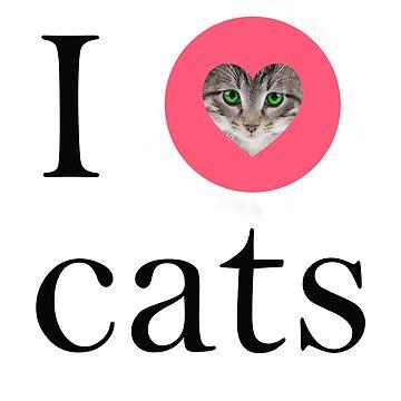 i love cats by hamzabarcelonaa