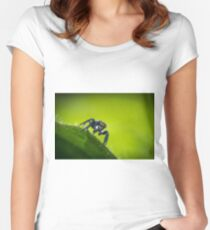 Jumping Spider Macro Women's Fitted Scoop T-Shirt