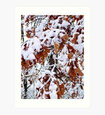 December Leaves Art Print