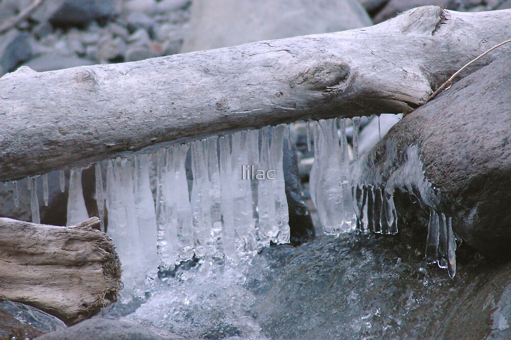 Hanged Ice  by lilac
