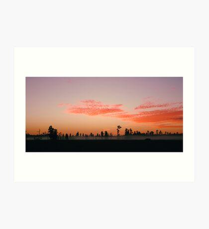 Florida Wilderness Sunrise Art Print