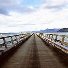 Jackson Bay by Louise Marlborough