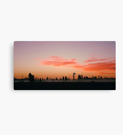 Florida Wilderness Sunrise Canvas Print