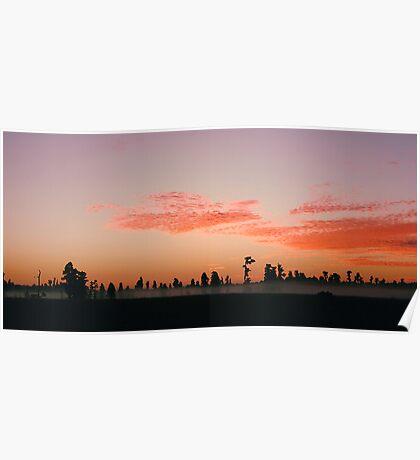 Florida Wilderness Sunrise Poster