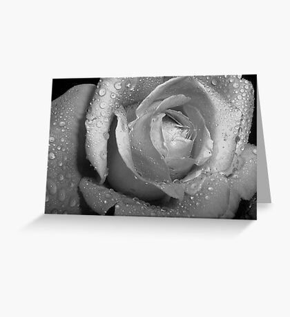 Waters of Silver Greeting Card