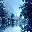 Winter Blues ! by Elfriede Fulda