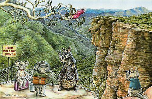 Rock Wallabies by Pete Morris