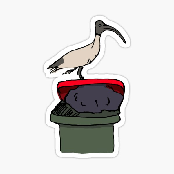 Bin Chicken Sticker