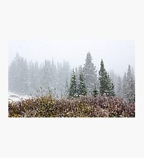 Snow on Autumn Landscape Photographic Print