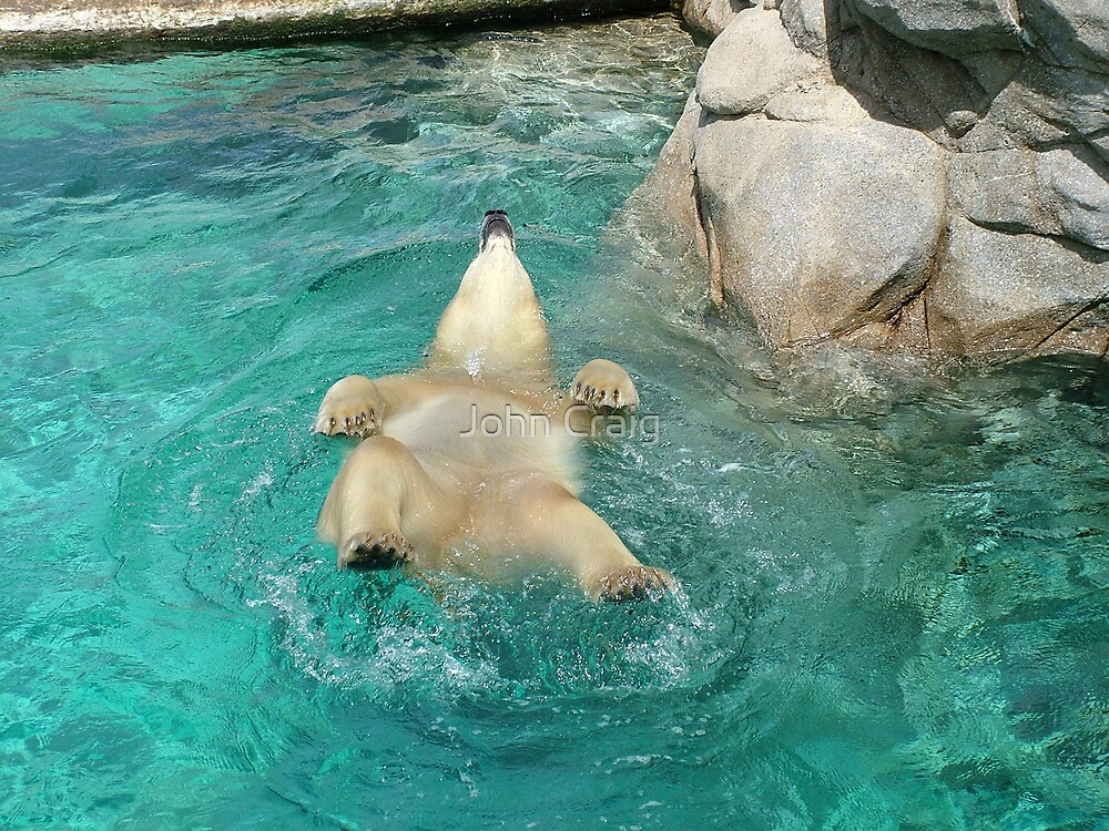 Backstroke by John Craig