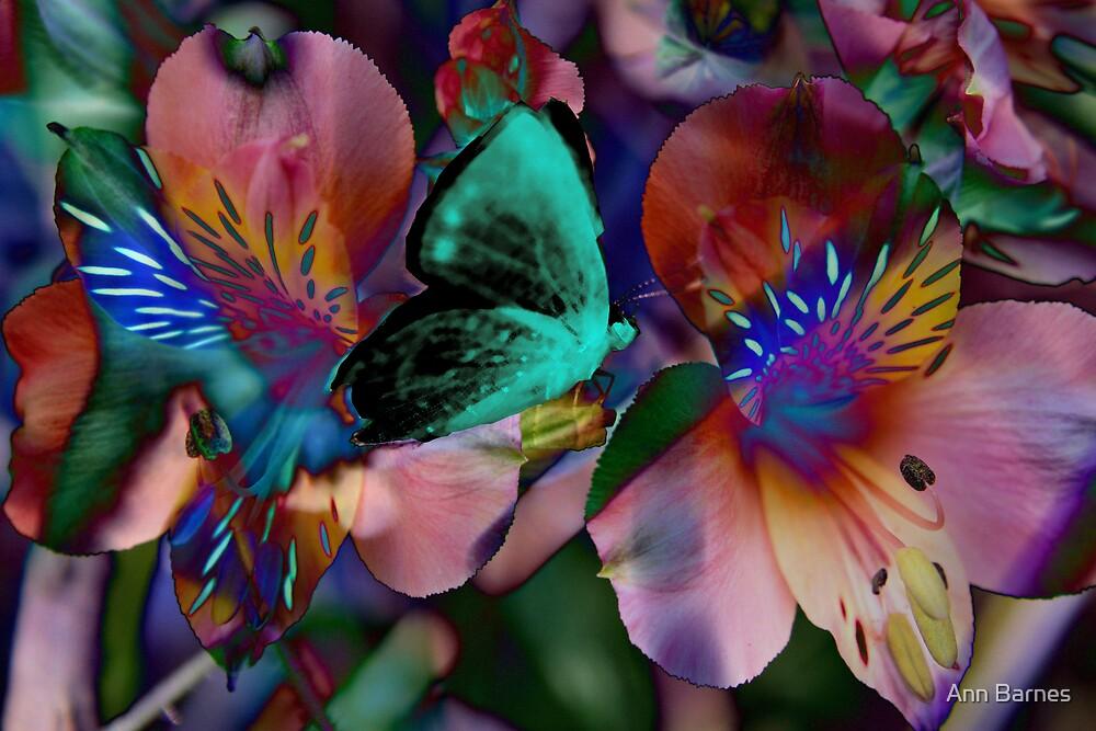 Butterfly Art #11 by Ann Barnes