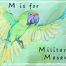 M is for Military Macaw by JenaBenton