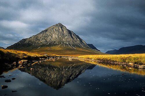 Highland Beauty by AA Fer