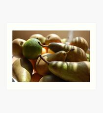 Fruitful Harvest Art Print