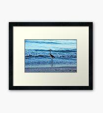 Early Morning Heron Beach Walk I  Framed Print