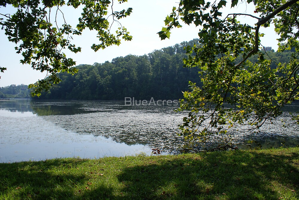 Lake-Side Retreat by BlueAcres