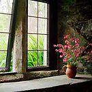 Window Still by Nick Huggins