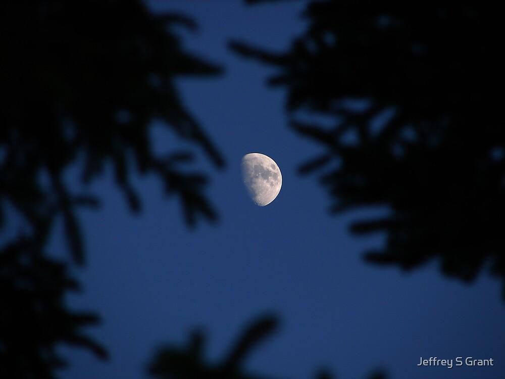 Peek A Boo Moon by Jeffrey S Grant
