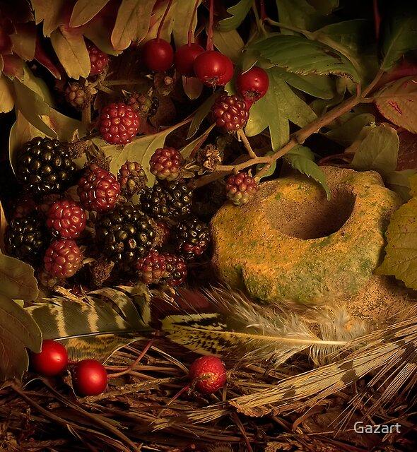 Blackberries by Gazart