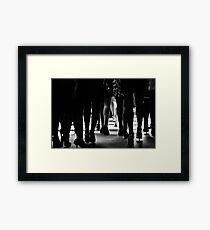 Greenlight Framed Print