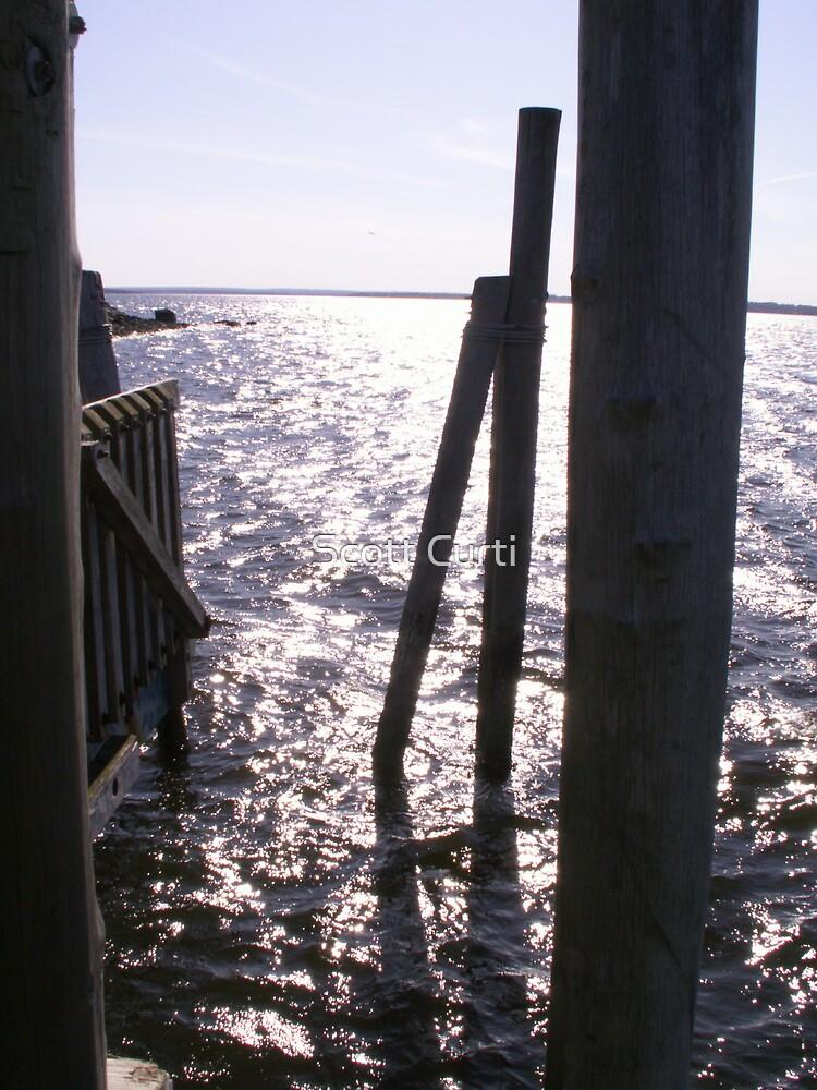 Docking stage by Scott Curti