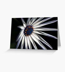 Brighten your Day - Daisy Greeting Card