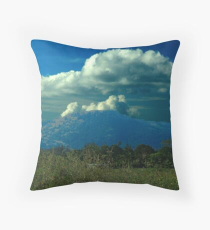 Sudden Summer Rain Throw Pillow