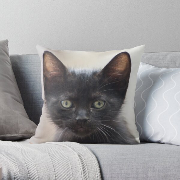 black kitten portrait Throw Pillow
