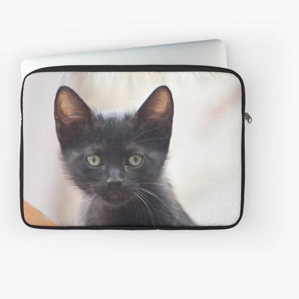 black kitten portrait Laptop Sleeve