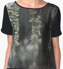 Pine Women's Chiffon Top