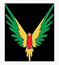 BIRD COLOUR JAKE Photographic Print