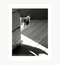 #633    Peeking Around The Corner Art Print