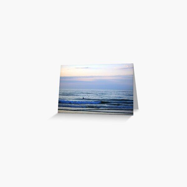 Gulls at Sunset Greeting Card
