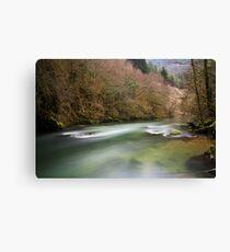 Albarine river Canvas Print