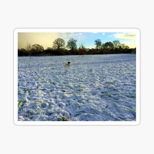 Alone in the field Sticker