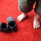 Baby Steps by aneubauer