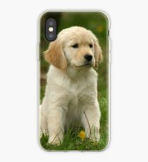 Vinilo o funda para iPhone Golden Retriever! Puppy!