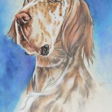 English Setter by BarbBarcikKeith