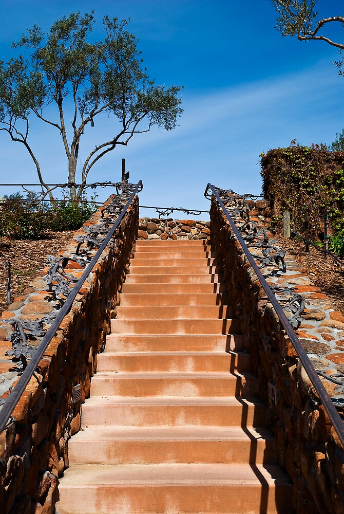 Ornate stairway at Viansa Winery, California by MarkEmmerson