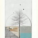 A Tree Grows by Susan Ringler