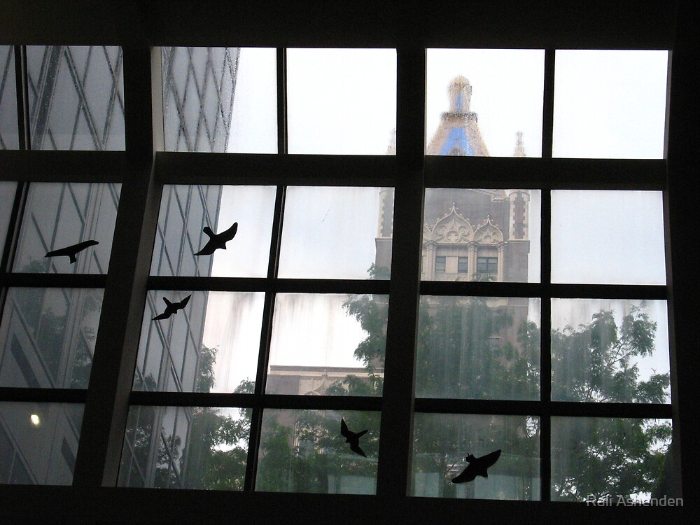 Murder in the Rain by Rali Ashenden