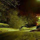 Dead End Street  by Larry Llewellyn